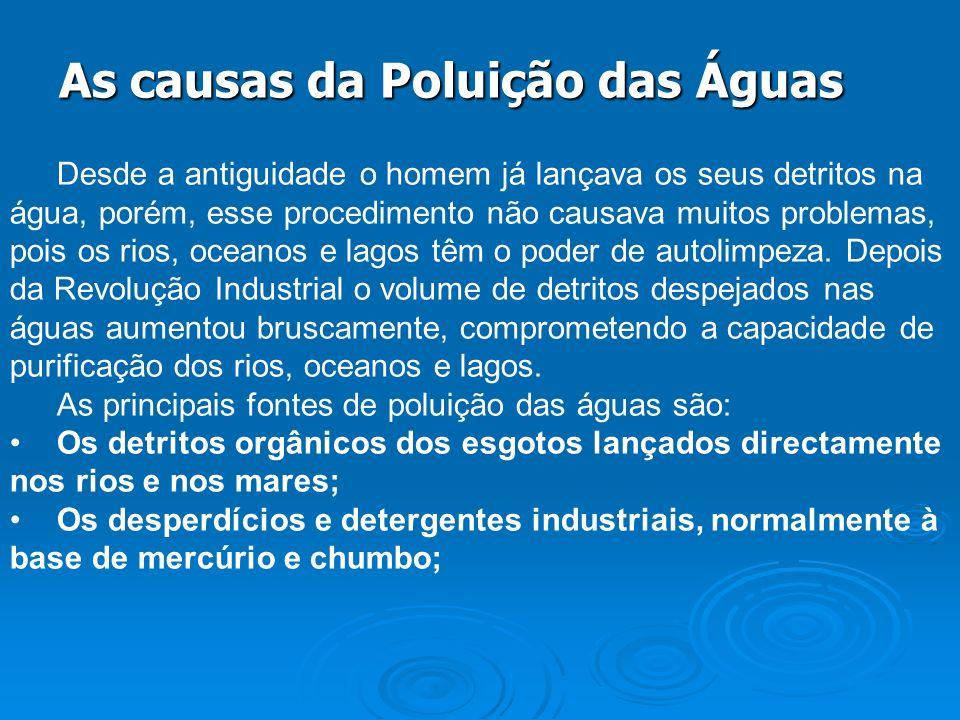 As causas da Poluição das Águas