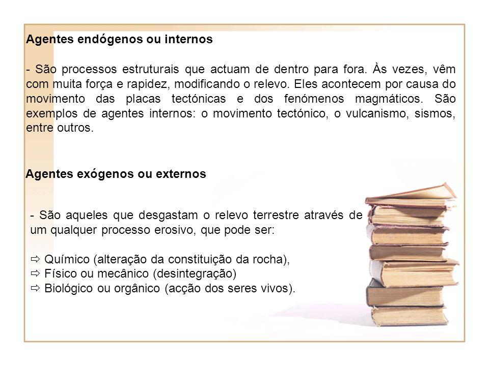 Agentes endógenos ou internos