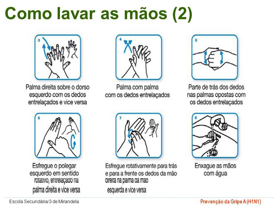 Como lavar as mãos (2)