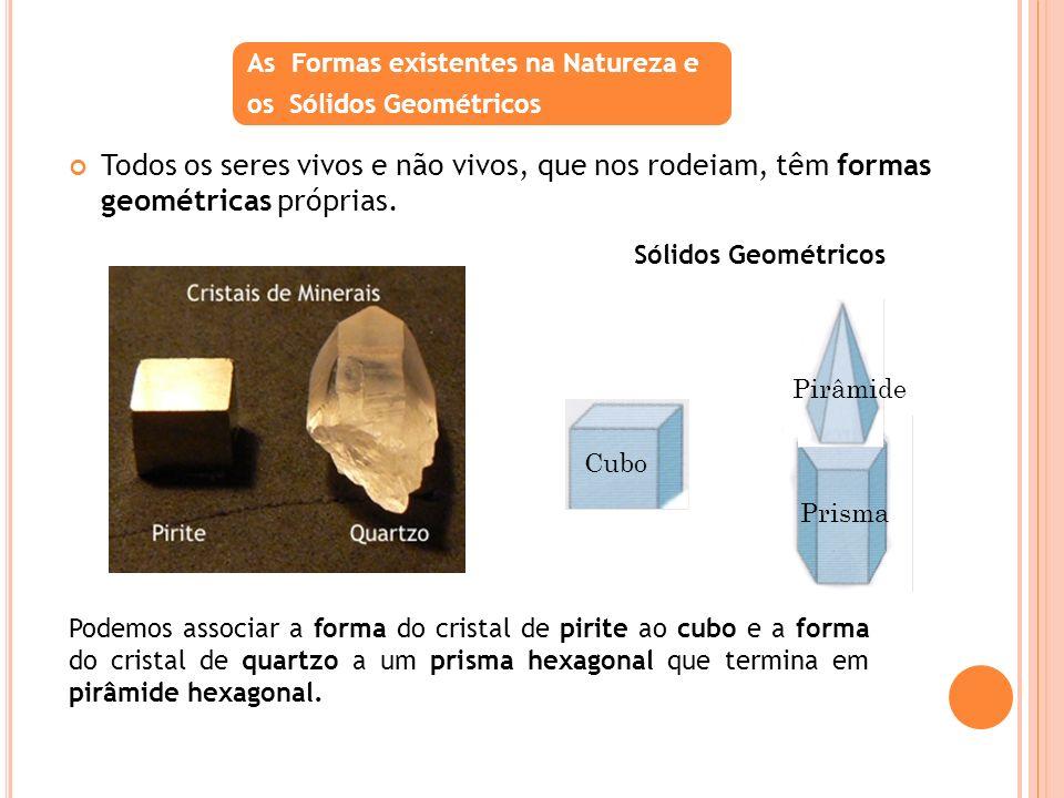 As Formas existentes na Natureza e
