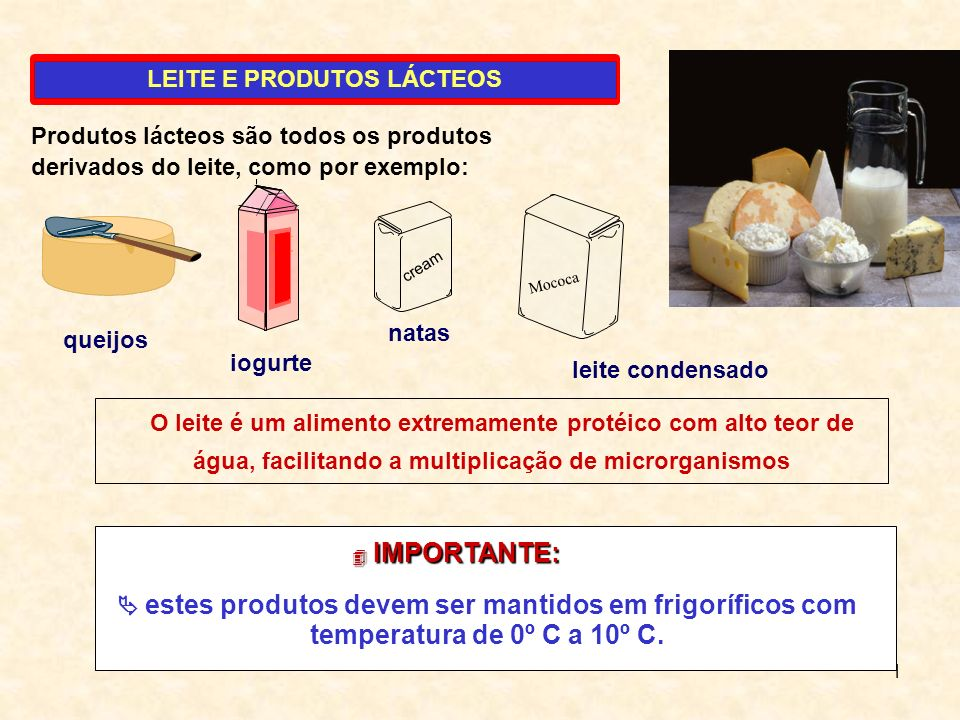 LEITE E PRODUTOS LÁCTEOS