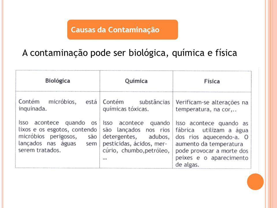 A contaminação pode ser biológica, química e física