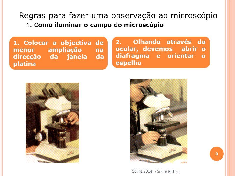 Regras para fazer uma observação ao microscópio