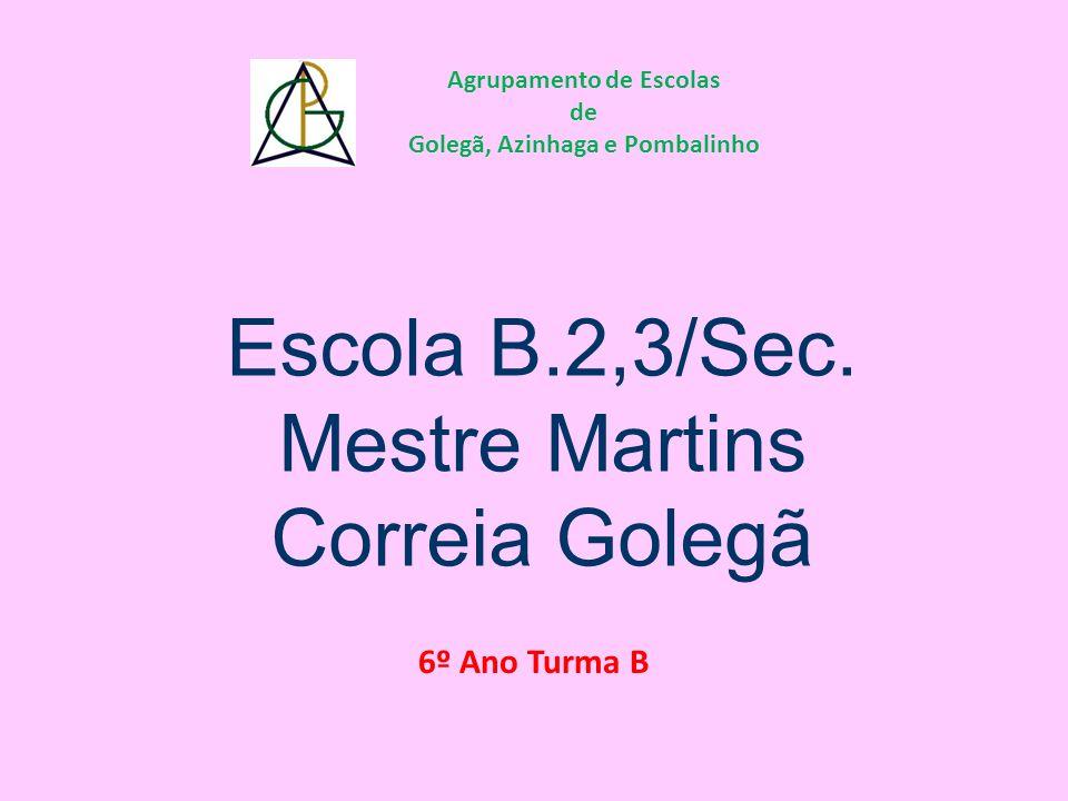 Agrupamento de Escolas Golegã, Azinhaga e Pombalinho