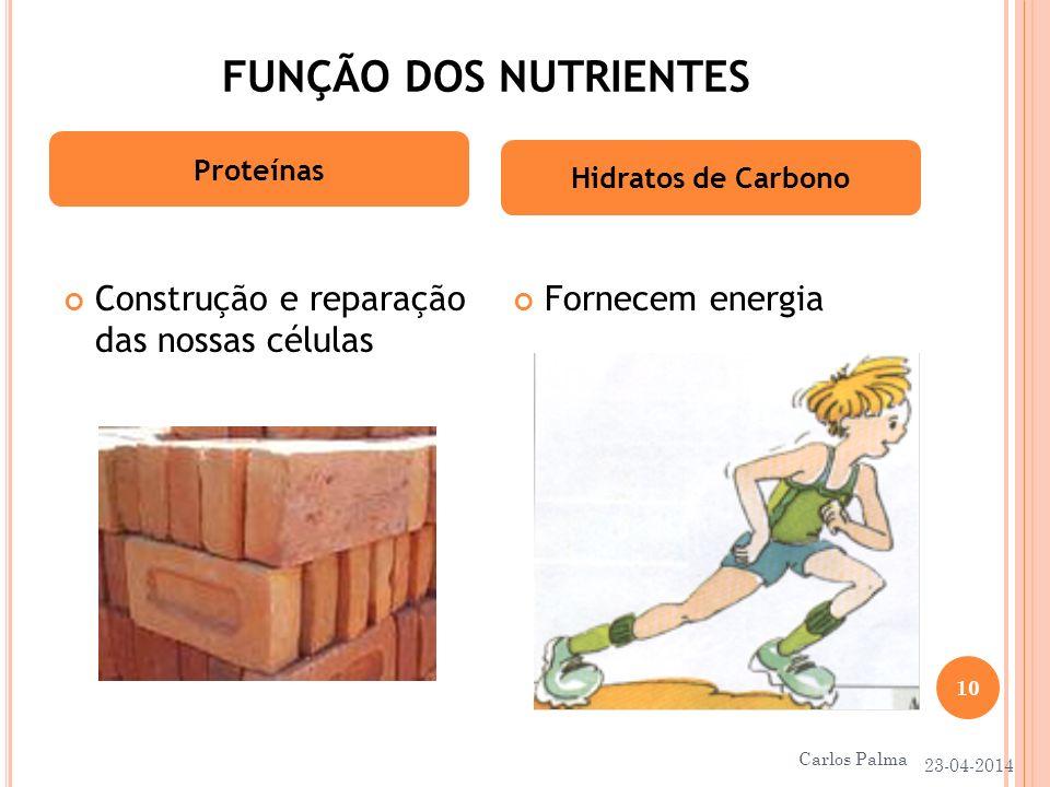 FUNÇÃO DOS NUTRIENTES Construção e reparação das nossas células