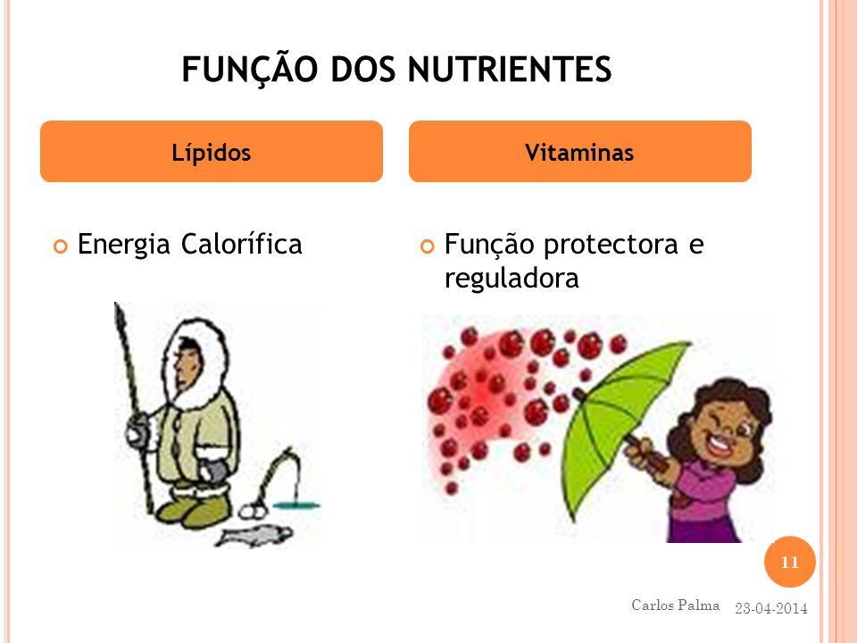 FUNÇÃO DOS NUTRIENTES Energia Calorífica