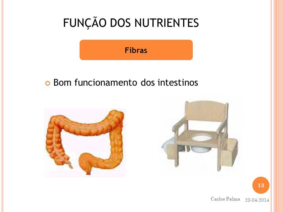 FUNÇÃO DOS NUTRIENTES Bom funcionamento dos intestinos Fibras