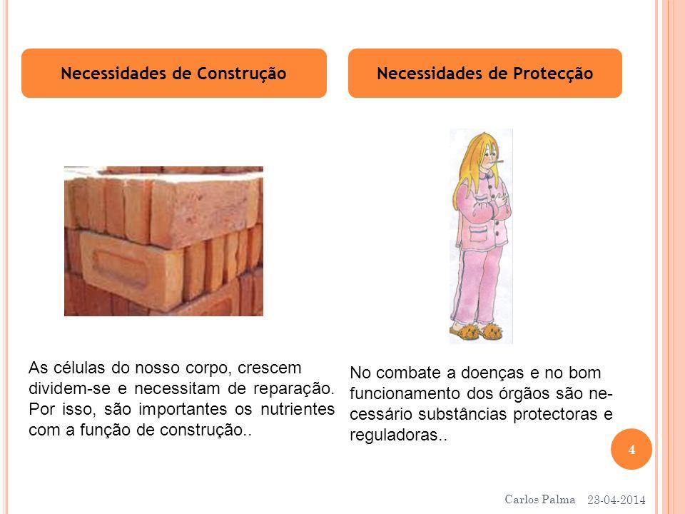 Necessidades de Construção Necessidades de Protecção