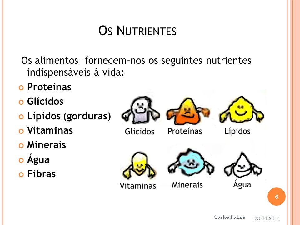 Os Nutrientes Os alimentos fornecem-nos os seguintes nutrientes indispensáveis à vida: Proteínas.