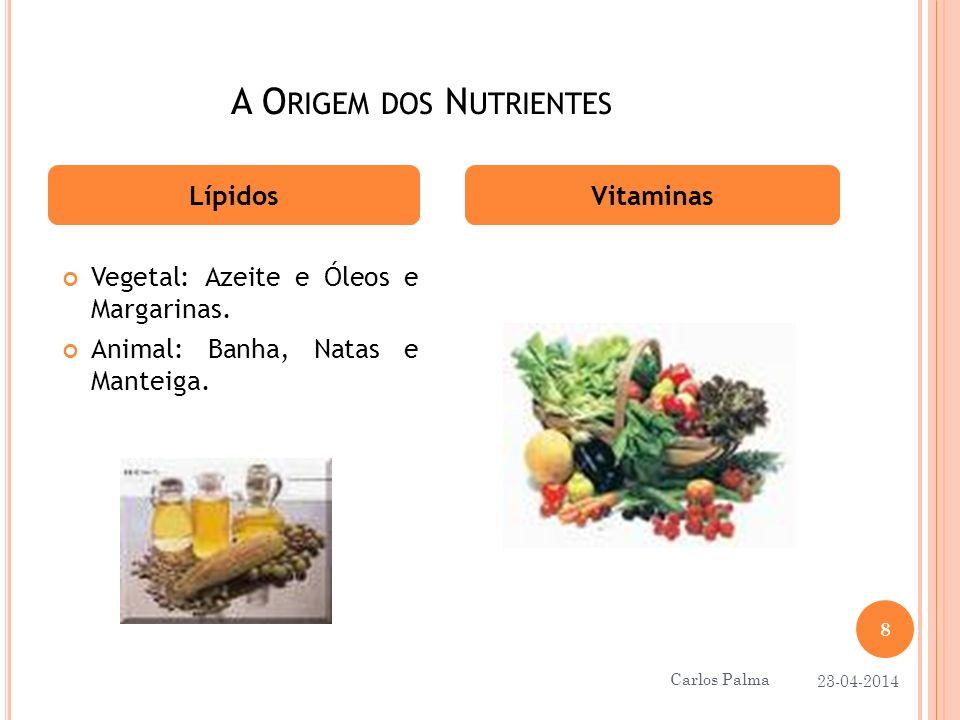 A Origem dos Nutrientes