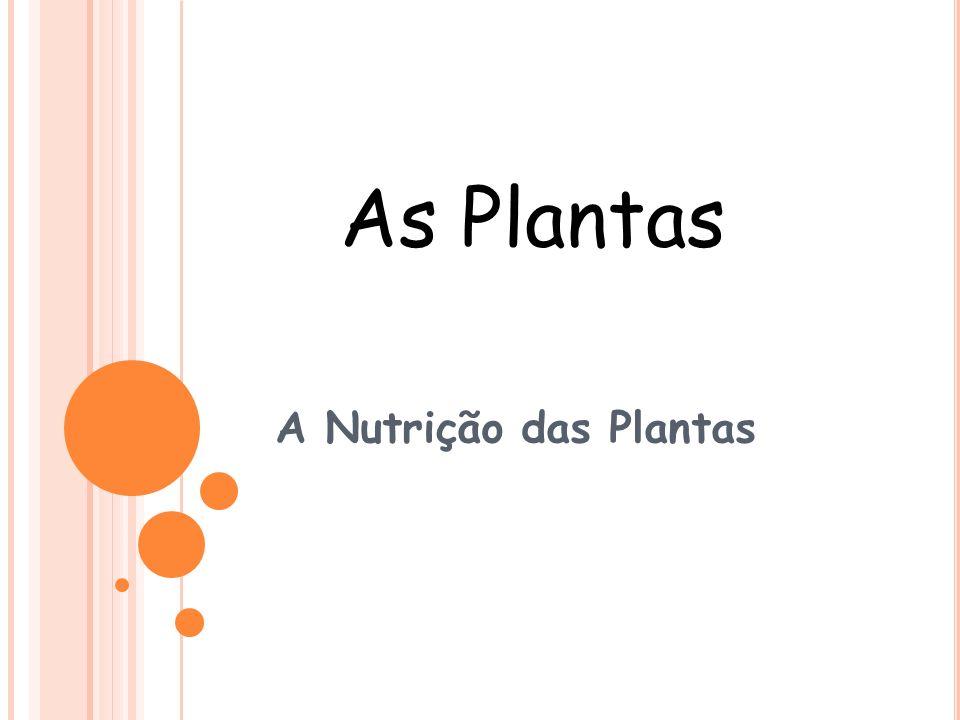 As Plantas A Nutrição das Plantas