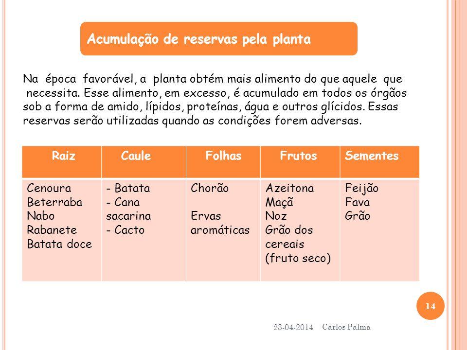 Acumulação de reservas pela planta