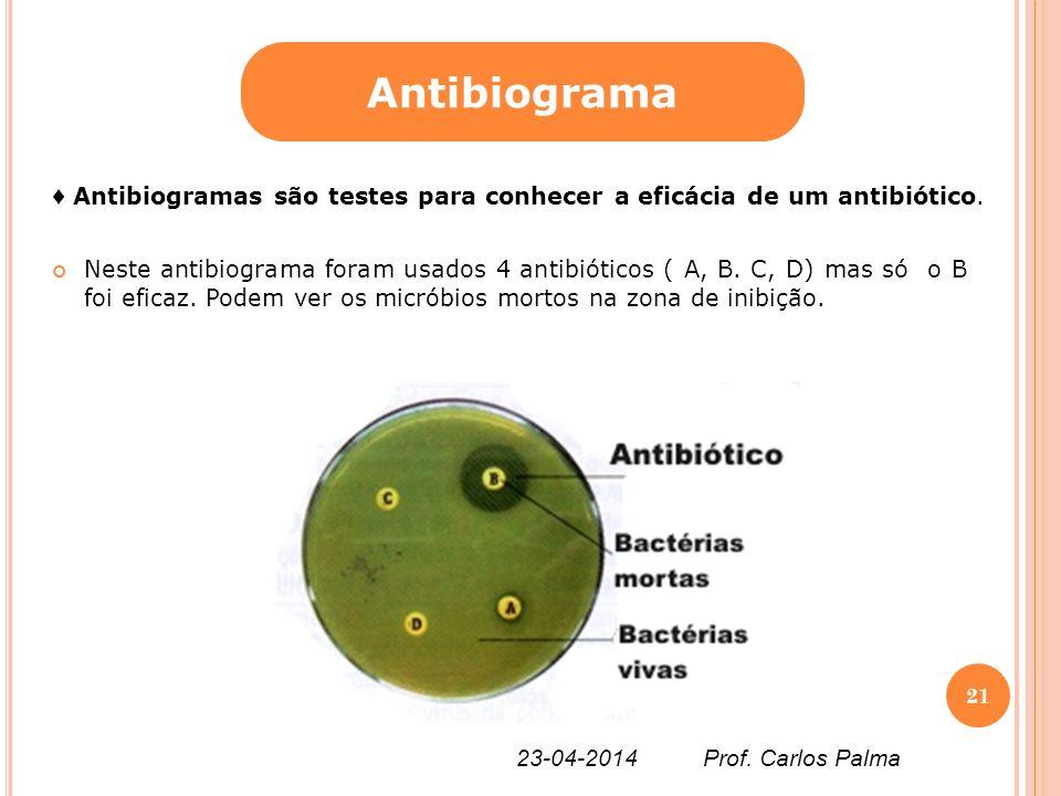 Antibiograma ♦ Antibiogramas são testes para conhecer a eficácia de um antibiótico.