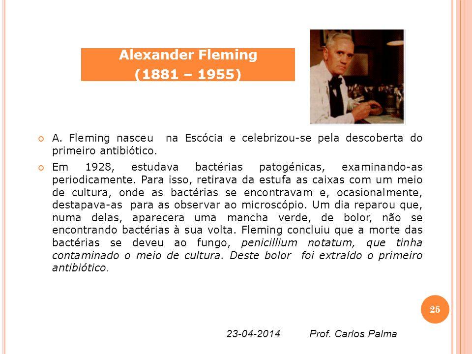Alexander Fleming (1881 – 1955) A. Fleming nasceu na Escócia e celebrizou-se pela descoberta do primeiro antibiótico.