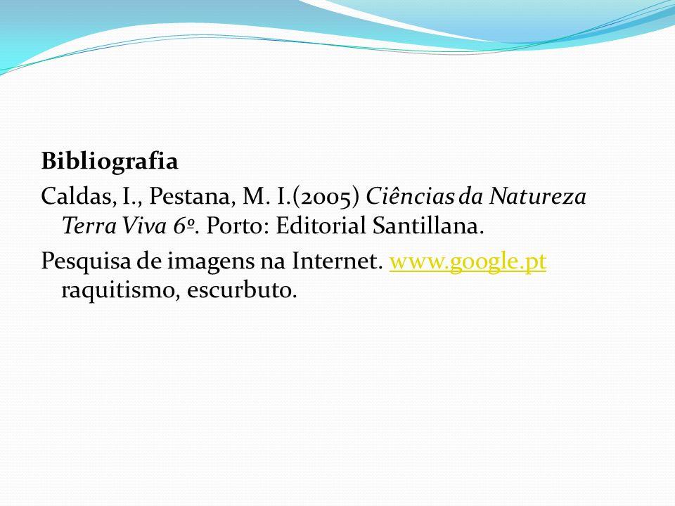 Bibliografia Caldas, I., Pestana, M. I.(2005) Ciências da Natureza Terra Viva 6º. Porto: Editorial Santillana.