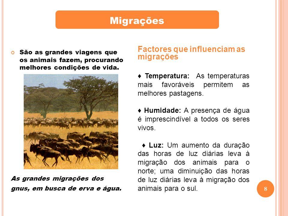 Migrações Factores que influenciam as migrações