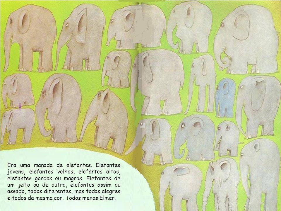 Era uma manada de elefantes