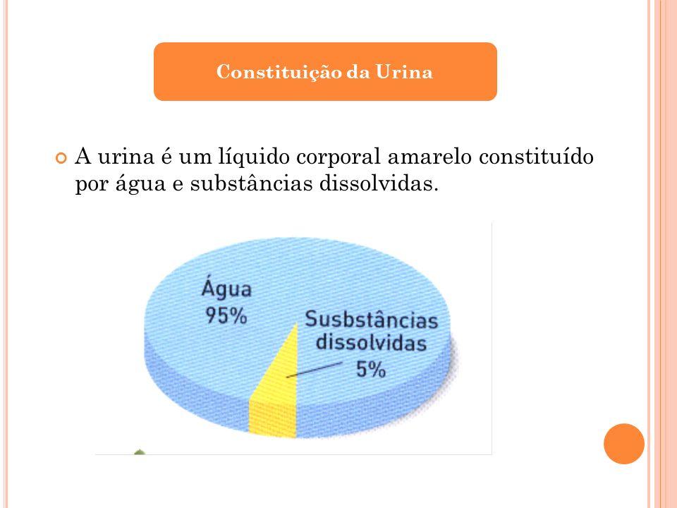 Constituição da Urina A urina é um líquido corporal amarelo constituído por água e substâncias dissolvidas.