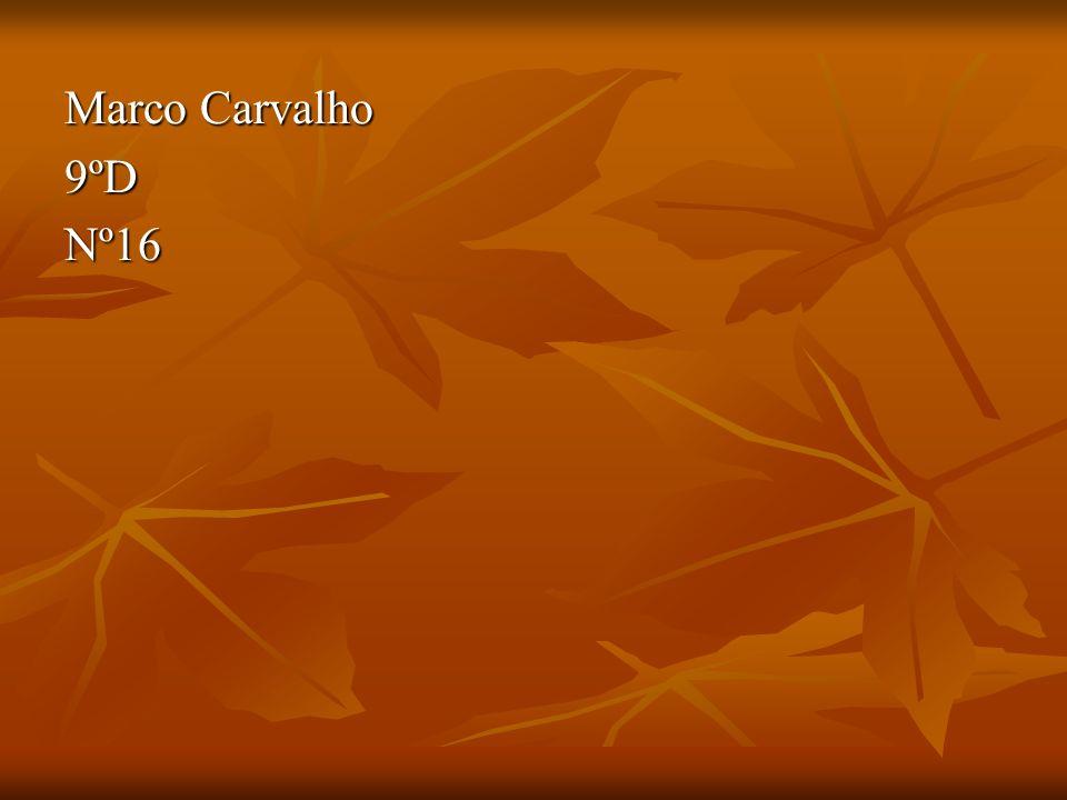 Marco Carvalho 9ºD Nº16