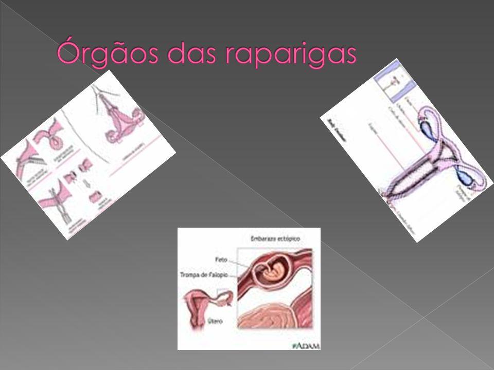 Órgãos das raparigas
