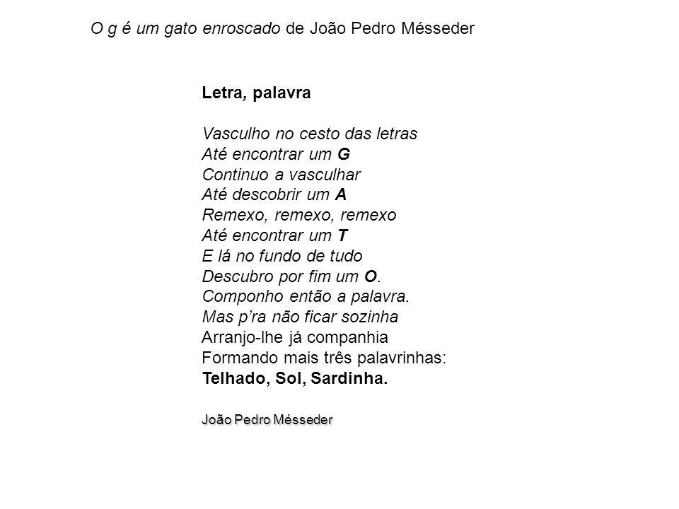 O g é um gato enroscado de João Pedro Mésseder