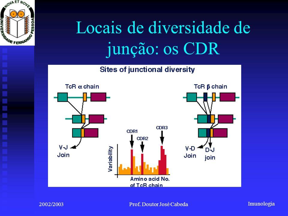 Locais de diversidade de junção: os CDR