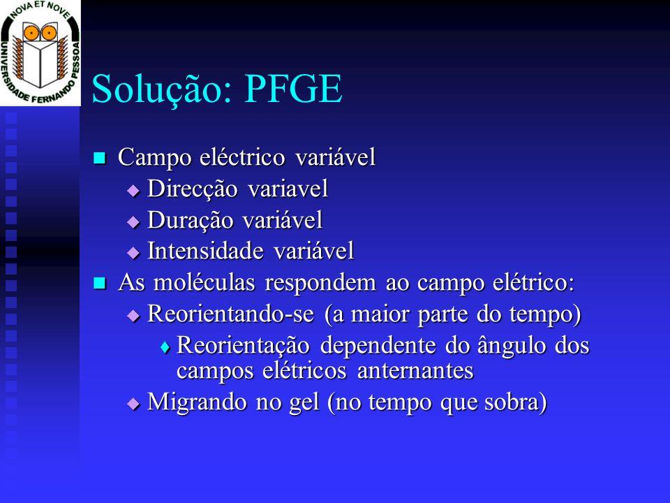 Solução: PFGE Campo eléctrico variável Direcção variavel
