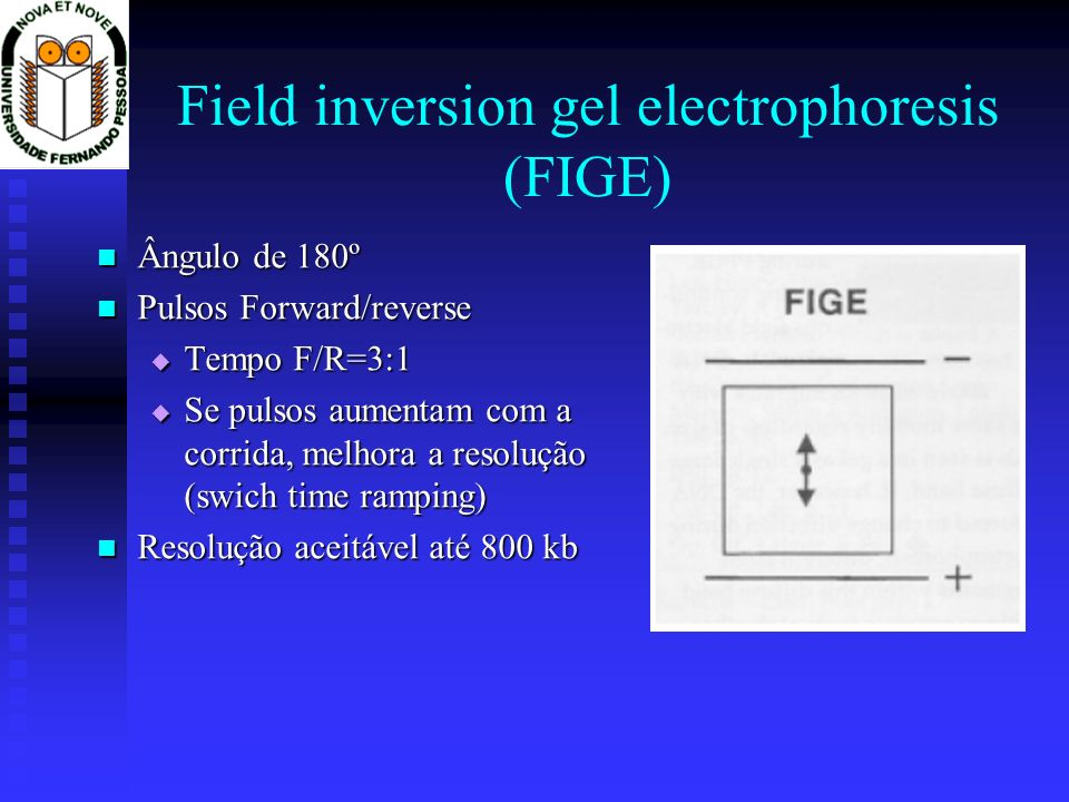 Field inversion gel electrophoresis (FIGE)