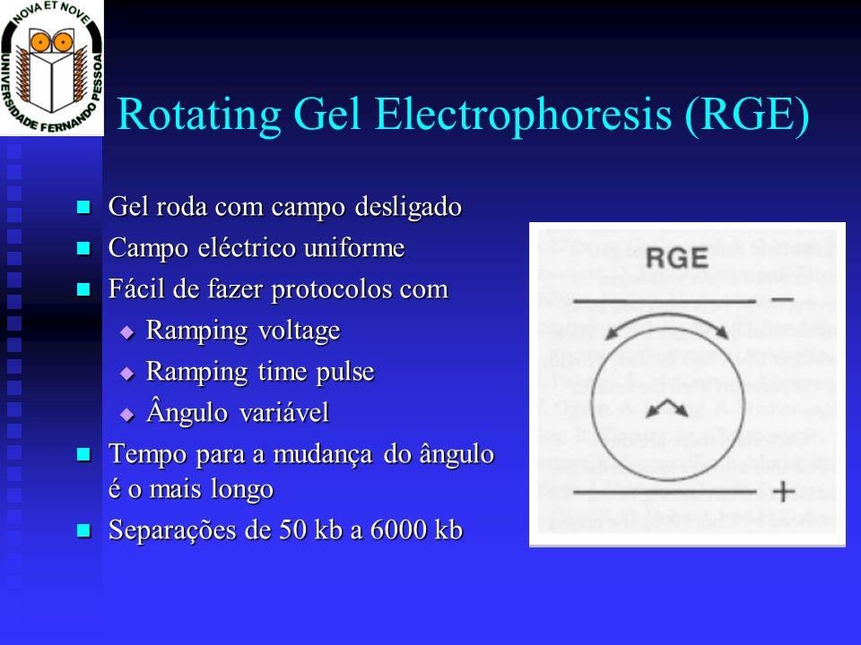 Rotating Gel Electrophoresis (RGE)