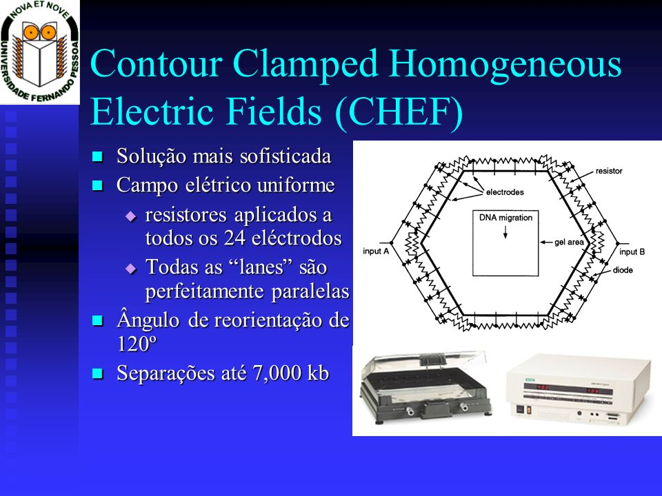 Contour Clamped Homogeneous Electric Fields (CHEF)