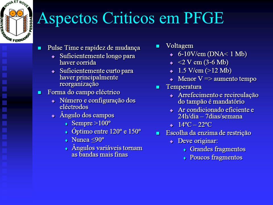 Aspectos Criticos em PFGE