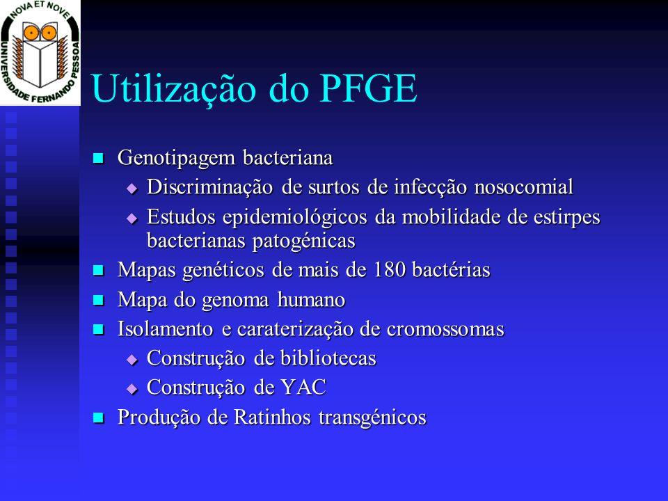 Utilização do PFGE Genotipagem bacteriana