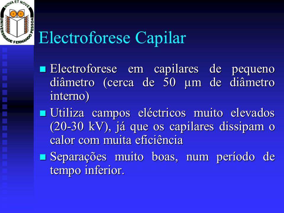 Electroforese Capilar