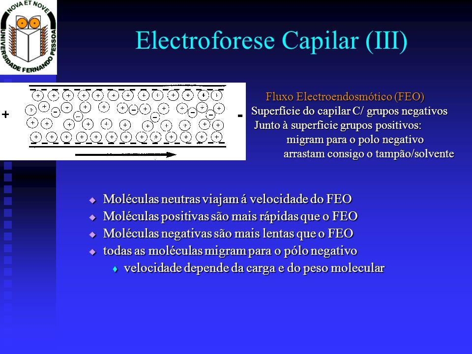 Electroforese Capilar (III)