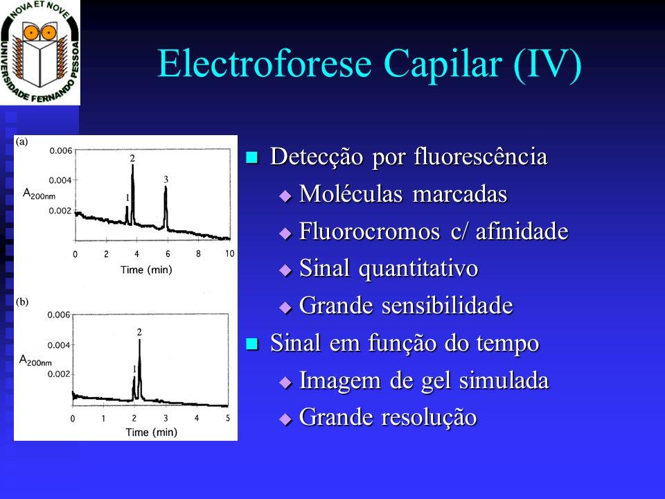 Electroforese Capilar (IV)