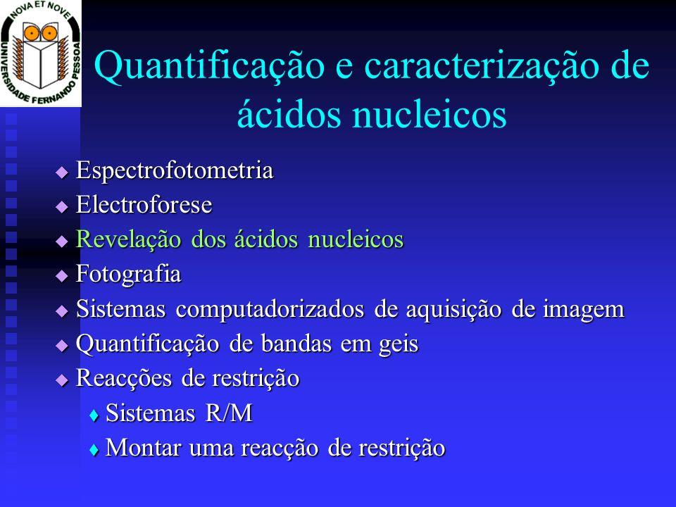 Quantificação e caracterização de ácidos nucleicos
