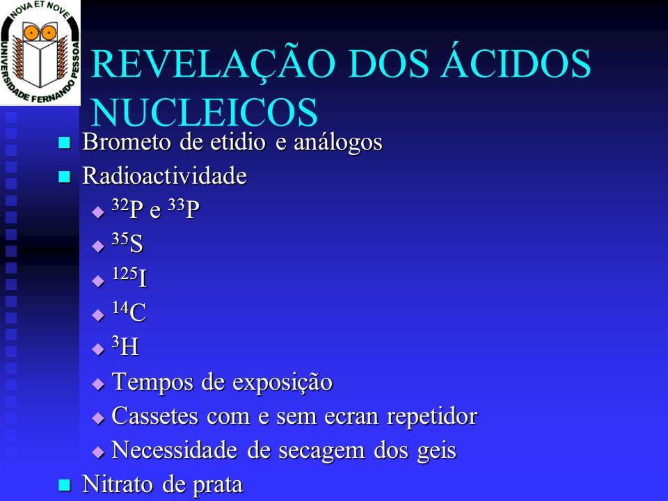 REVELAÇÃO DOS ÁCIDOS NUCLEICOS