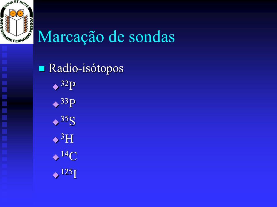 Marcação de sondas Radio-isótopos 32P 33P 35S 3H 14C 125I