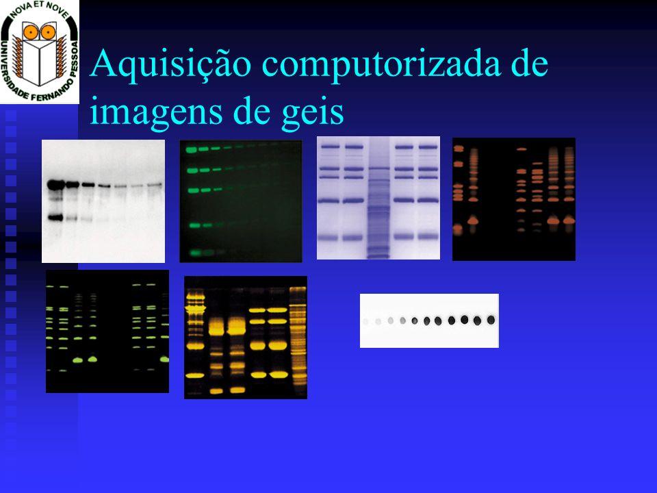 Aquisição computorizada de imagens de geis