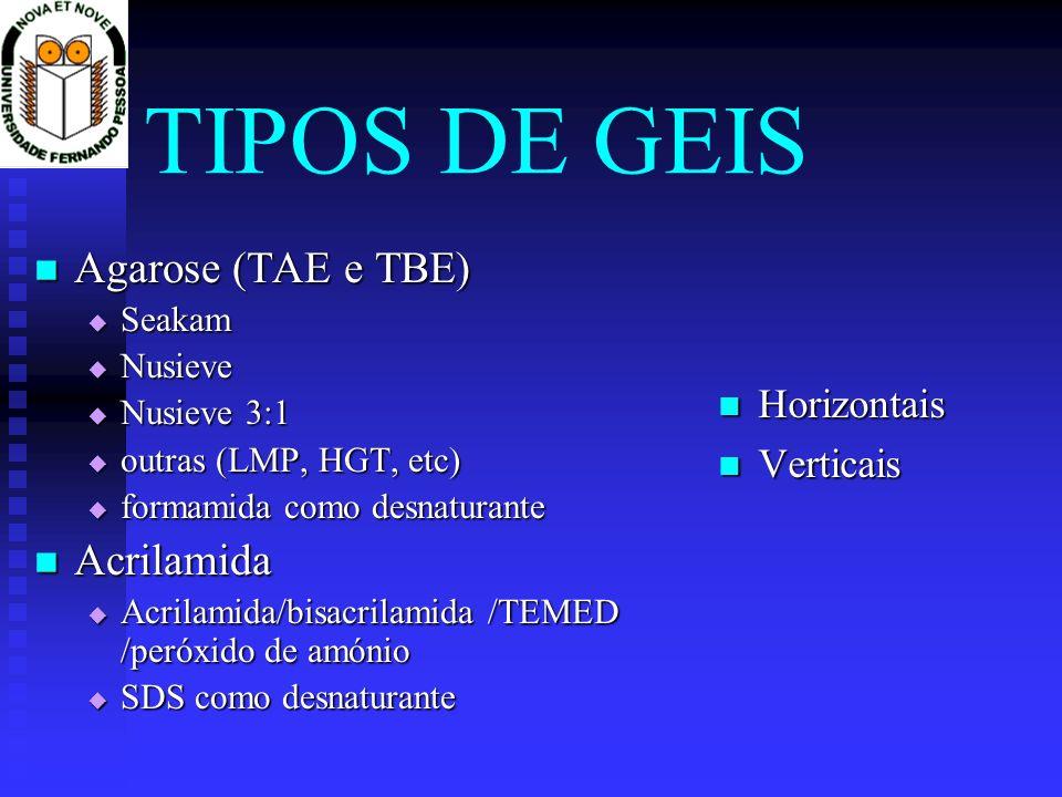 TIPOS DE GEIS Agarose (TAE e TBE) Acrilamida Horizontais Verticais