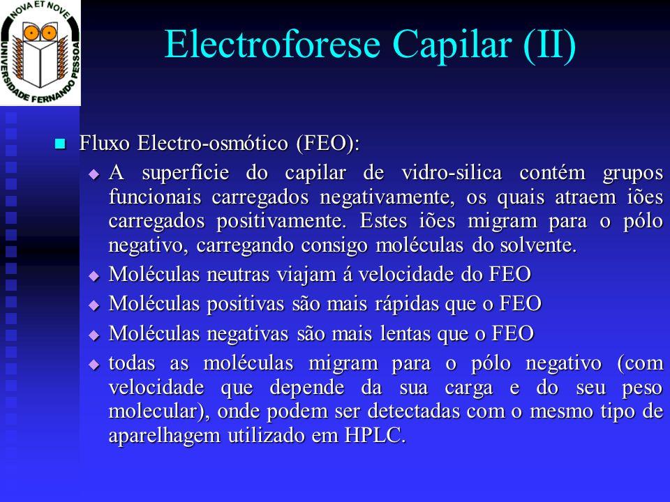 Electroforese Capilar (II)