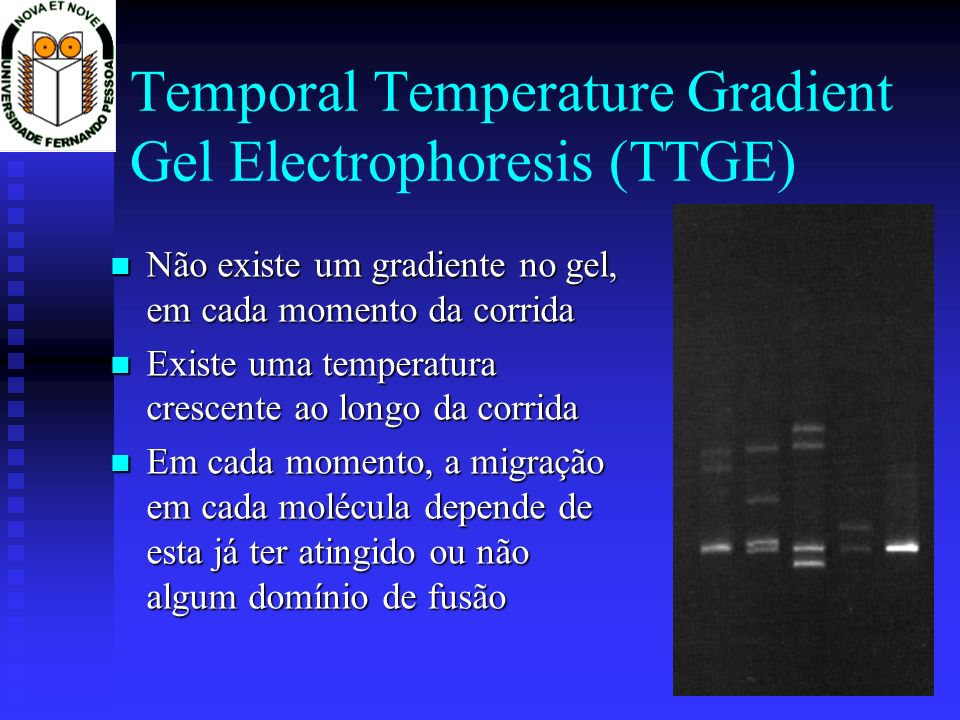 Temporal Temperature Gradient Gel Electrophoresis (TTGE)