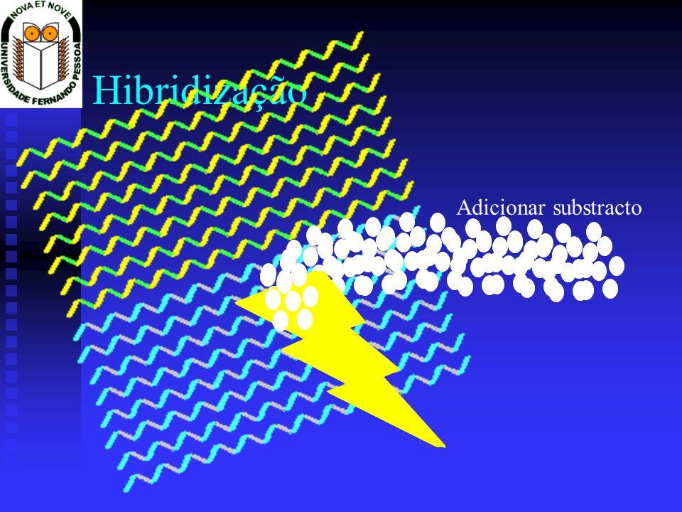Hibridização Adicionar substracto