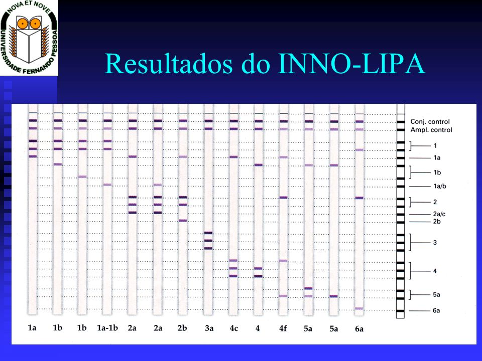 Resultados do INNO-LIPA