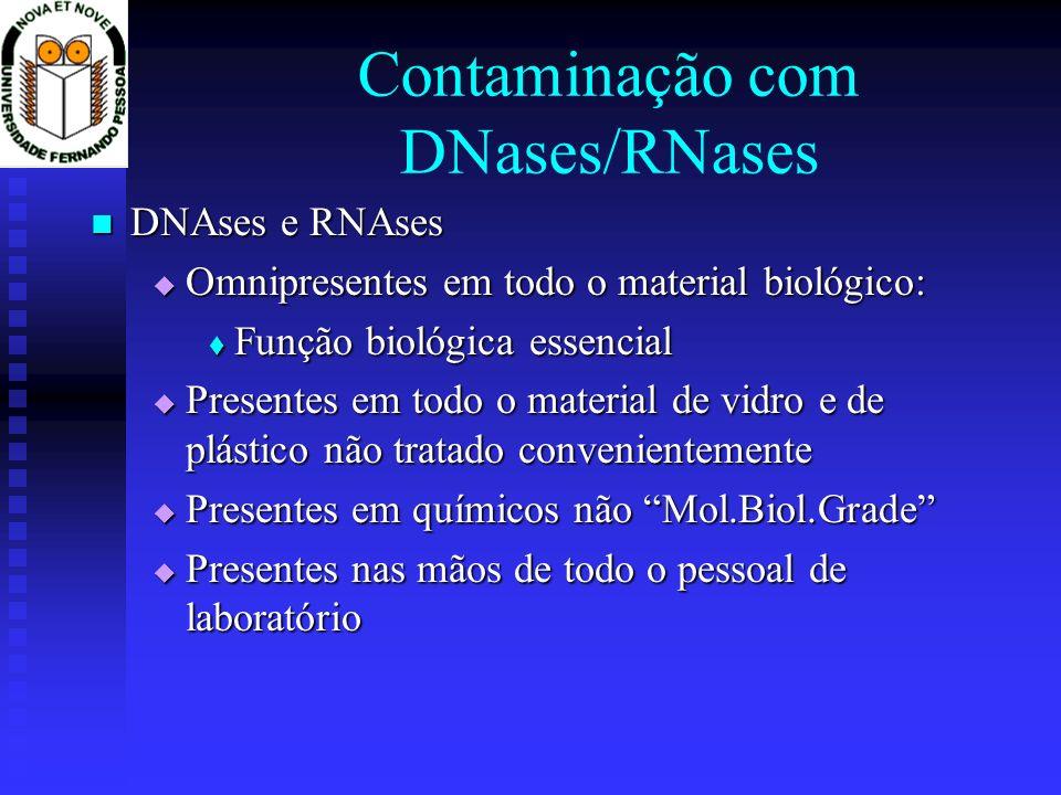 Contaminação com DNases/RNases