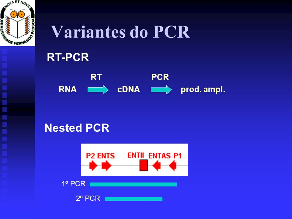 Variantes do PCR RT-PCR Nested PCR RNA cDNA RT prod. ampl. PCR 1º PCR