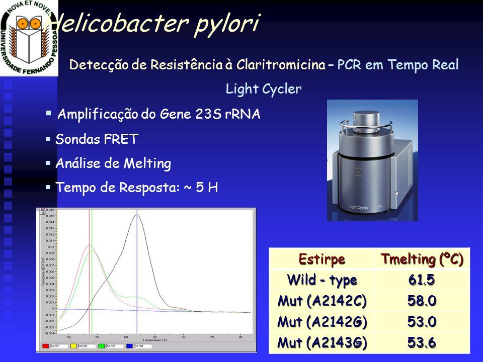 Detecção de Resistência à Claritromicina – PCR em Tempo Real