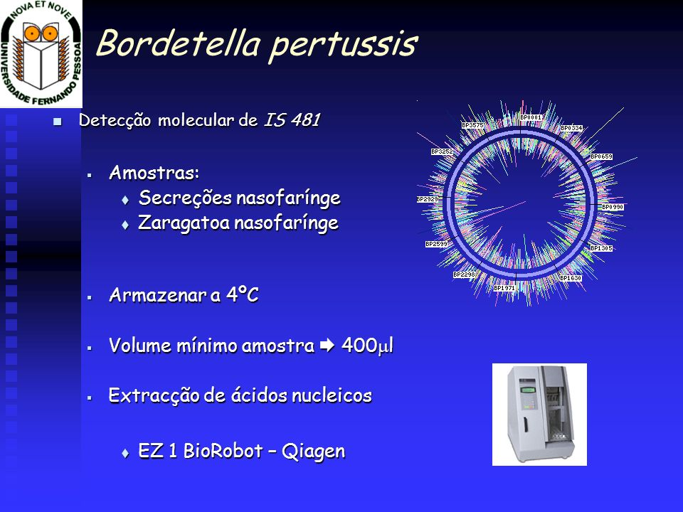 Bordetella pertussis Amostras: Secreções nasofarínge