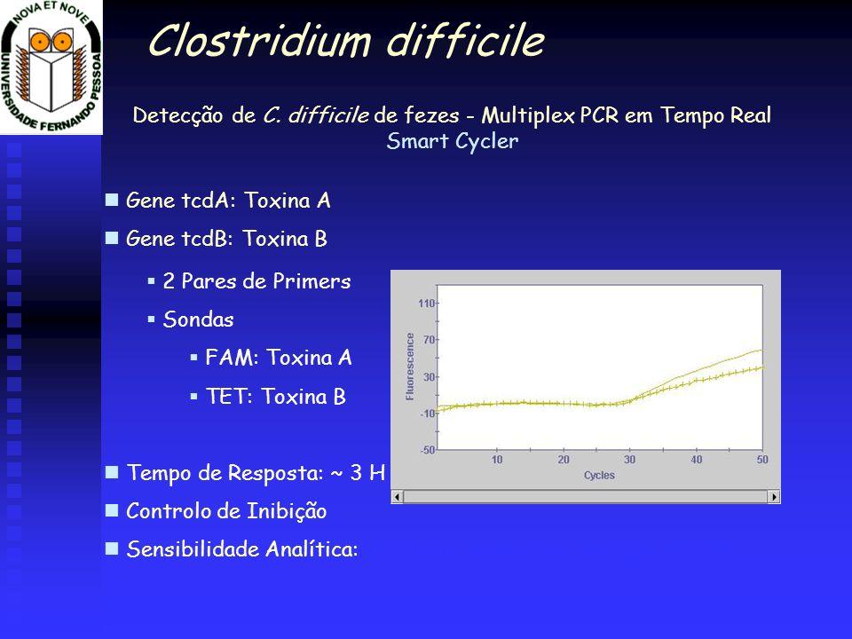 Detecção de C. difficile de fezes - Multiplex PCR em Tempo Real