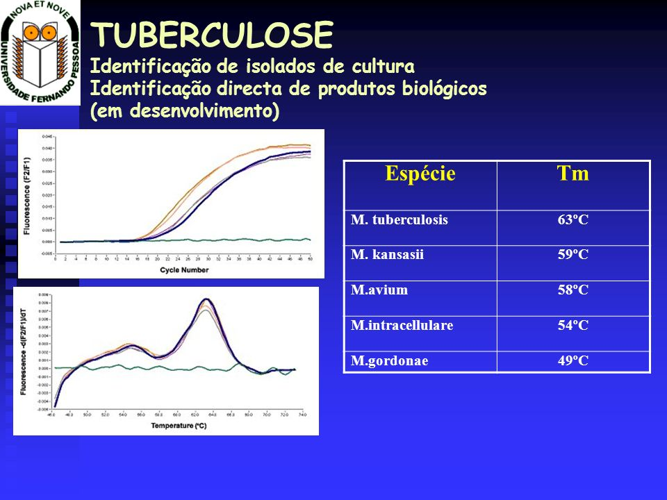 TUBERCULOSE Identificação de isolados de cultura Identificação directa de produtos biológicos (em desenvolvimento)